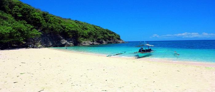 puting buhangin Quezon beach